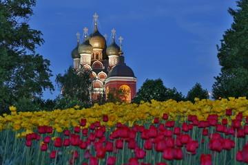 Церковь и тюльпаны