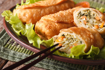 Delicious fried spring rolls sliced on a plate macro