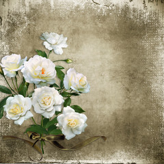 Vintage shabby background with white roses