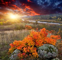 Autumn susnet