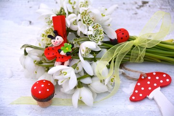 Glückssymbole mit Schneeglöckchen