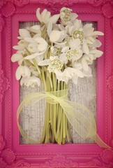 Blumenstrauß - Schneeglöckchen - nostalgisch