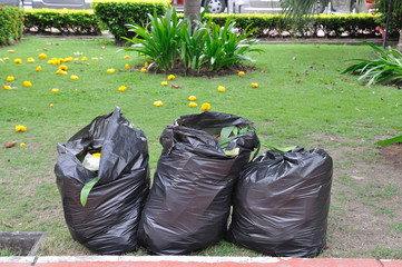3 Black garbage bags on green yard in garden