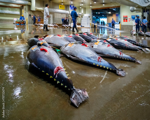 Foto op Plexiglas Japan Tuna auction at Osaka Central Wholesale Market
