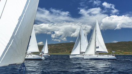 Sailboats participate in sailing regatta on the Sea. Sailing.
