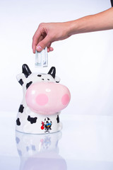 Piggy bank for money