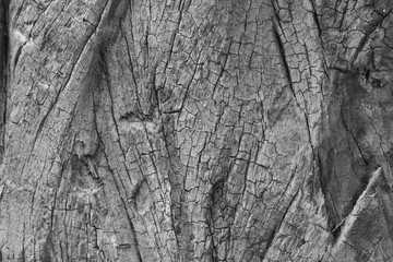 old wood texture black and white