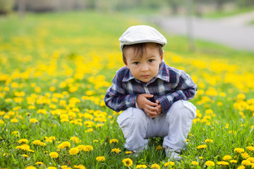 Portrait of a little boy in a dandelion field