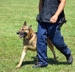 Police officer with his german shepherd dog