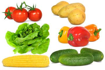 Gemüse 310