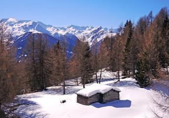 Almhütte im Winter - mountain cabin in winter