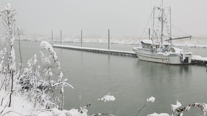 Scotch Pond Steveston Fresh Snow