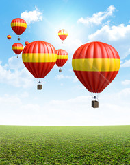 Hot Air Balloons On Green Grass