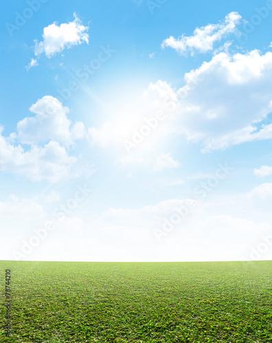 Plain Grass And Blue Sky - 78744210