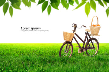 Bicycle on Meadow and leaf. Meadow in motion,isolated on white
