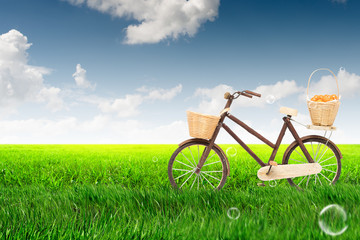 bicycle on the green lush meadow with blue sky background.