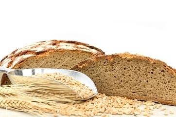 Brot - Konzept