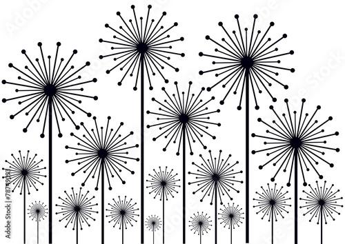 Naklejka black and white dandelions illustration