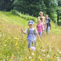 Familie im Gänsemarsch in der Blumenwiese