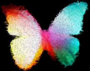 multicolor bright butterfly on black abstract geometric