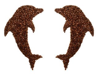 Collection dolphin is laid out coffee beans