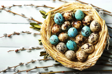 Bird eggs in nest on color wooden background