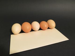 Unpainted eggs