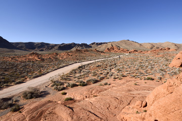 Dirt road in rocky desert