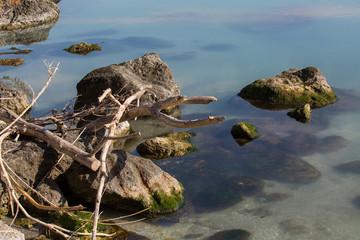 bois flotté rochers méditerranée