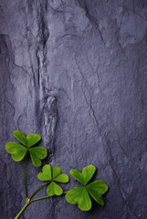 Three lucky clovers on a beautiful tile background