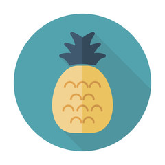 Pineapple flat icon with long shadow