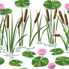 Wetland plants background