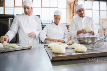 Serious colleagues kneading uncooked dough