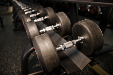 Dumbbells weights in gym