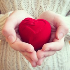 Female hands holding heart present