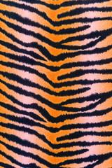 texture of print fabric stripes tiger