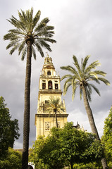 bell tower and minaret of the Mezquita in Cordoba, Andalusia.