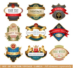 Vctor luxury labels