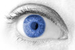 beautiful Blue woman eye macro shot