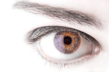 beautiful  woman eye macro shot