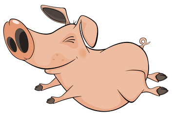 Pig. Cartoon