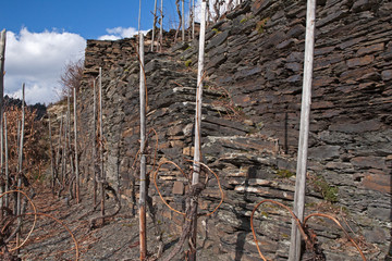 Natursteintreppe im Wingert