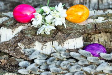 Bunte Ostereier mit Schneeglöckchen und Weidekätzchen