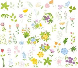 Набор цветочных графический набор, рука рисунок  иллюстрации