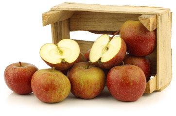 """Traditional Dutch apples called """"goudrenet"""""""