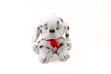 playful; dalmatian; puppy