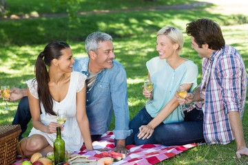 Happy couples having picnic at the park