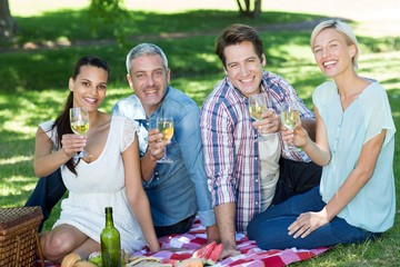 Happy couples toasting at the park