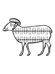 SHEEP pattern funny
