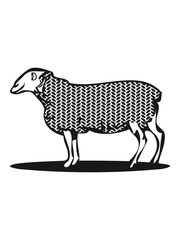 SHEEP pattern material